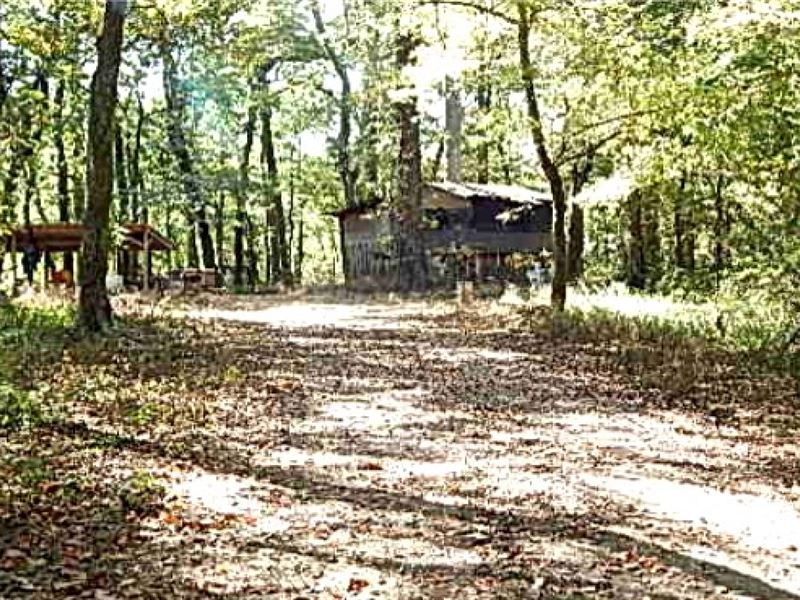 155 Acres In Sharkey County : Anguilla : Sharkey County : Mississippi