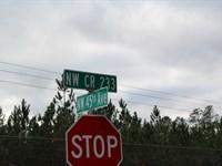 Parcel 2 Oak Creek Bradford County : Starke : Bradford County : Florida
