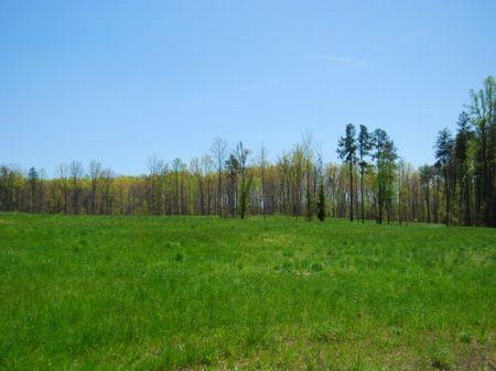 17 Acre Equestrian Tract : Campobello : Spartanburg County : South Carolina