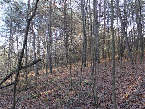 Veto Rd - 18 Acres : Vincent : Washington County : Ohio