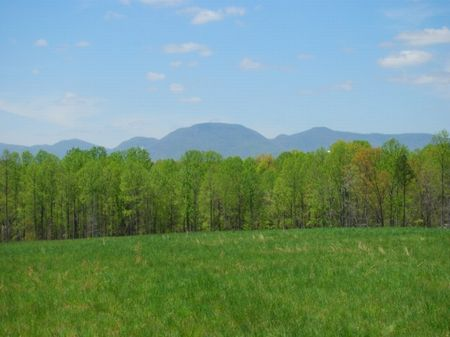 Equestrian Tract With Mountain View : Campobello : Spartanburg County : South Carolina