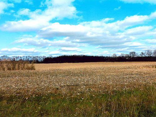 Land Auction - 303+/- Ac In 7 Tract : Laporte : La Porte County : Indiana