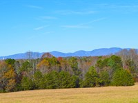 42 Acres Of Rolling Pasture : Inman : Spartanburg County : South Carolina