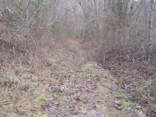 Tr 124 - 58 Acres : New Lexington : Perry County : Ohio