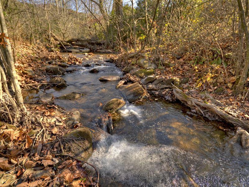 Mountain Land-Views-Trout Stream : Cherrylog : Gilmer County : Georgia