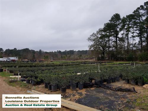 Land For Sale In Glenmora, La : Glenmora : Rapides Parish : Louisiana