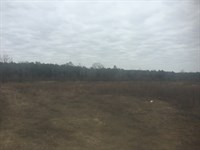 Land For Sale - Pheba, Ms : Pheba : Oktibbeha County : Mississippi