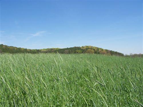 Beautiful 75 +/- Acres, Bartow Co. : Rydal : Bartow County : Georgia
