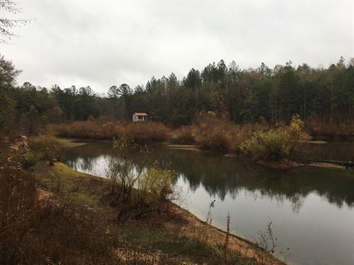 80 Acres With Pond : Troy : Pike County : Alabama