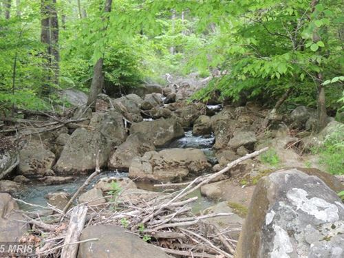 271 Acres In Mount Storm : Mount Storm : Grant County : West Virginia