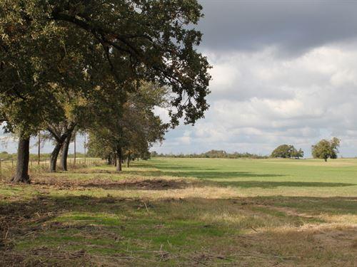 Panoramic Prime Acreage : Stephenville : Erath County : Texas