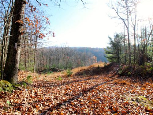 206+/- Acres Land In Williamsport : Williamsport : Lycoming County : Pennsylvania