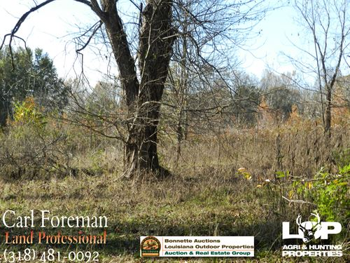 Farmland For Sale Avoyelles Parish : Evergreen : Avoyelles Parish : Louisiana
