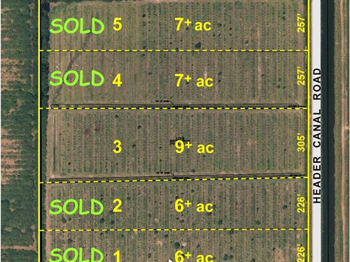 9Ac Laser Leveled Lot On Paved Road : Fort Pierce : Saint Lucie County : Florida