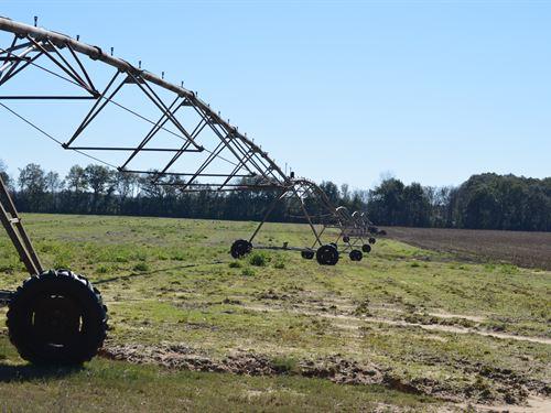 High Quality Irrigated Farm : Greenwood : Jackson County : Florida
