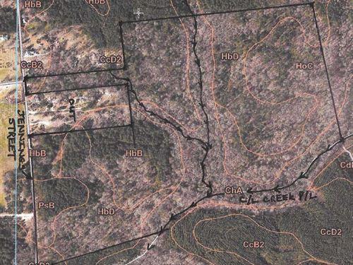 Great Recreation Tract/Timber/Farm : Crawfordville : Taliaferro County : Georgia