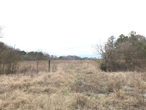 47.09 +/- Acres, Polk County : Cedartown : Polk County : Georgia