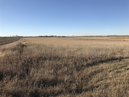 Premier Hunting Land & 2 Homes : Groton : Brown County : South Dakota