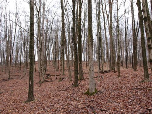 Sr 681 - 6 Acres - Athens County : Albany : Athens County : Ohio