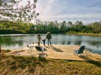 Rocky Comfort Plantation : Quincy : Gadsden County : Florida