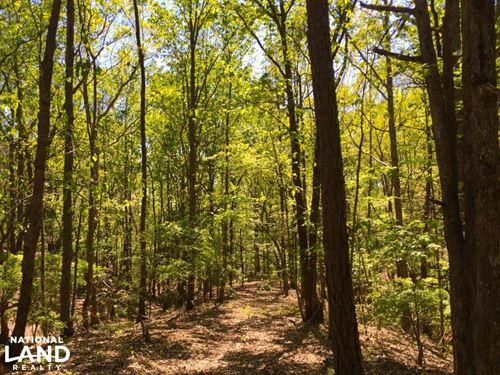 Liberty Hill Recreational Hardwoods : Kershaw : South Carolina
