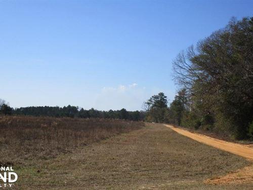20 Acres Lumpkin Farmland : Lumpkin : Stewart County : Georgia