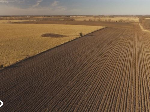 Highway 7 Crops And Cattle : Girard : Crawford County : Kansas