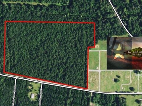 20 Ac - Rural Home Site Tract On Ed : Kirbyville : Jasper County : Texas