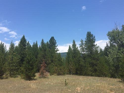 Twin Creek Hunting Haven : De Borgia : Mineral County : Montana