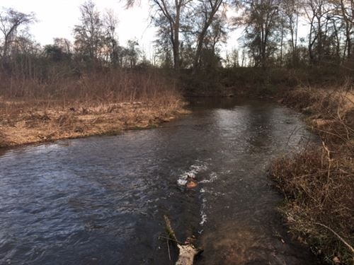 43 Acres Of Beautiful Waterfront Pr : Magnolia : Pike County : Mississippi