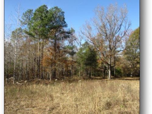200 Acres In Webster County : Eupora : Webster County : Mississippi
