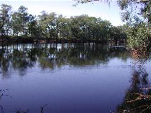 24.30 Ac. On Suwannee River : O'brien : Suwannee County : Florida