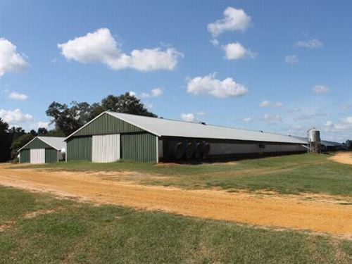 4 House Breeder Farm For Sale : Goshen : Pike County : Alabama