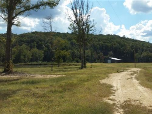 50+/- Acres In Tnf : Lineville : Clay County : Alabama