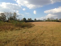 39.9 Acres, Wooded & Open, Creek : Cullman : Cullman County : Alabama