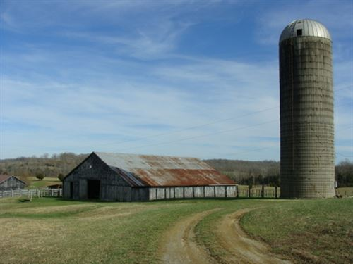 212 Acres In Adair County, Ky : Columbia : Adair County : Kentucky