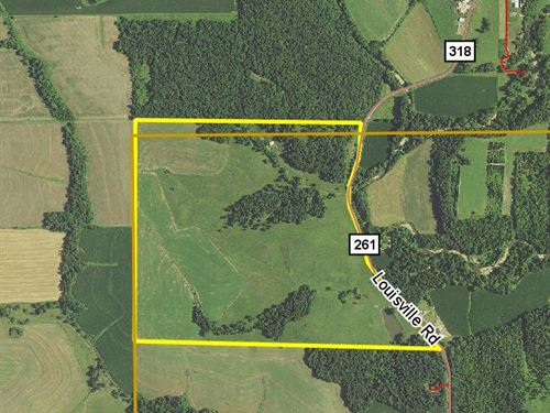 198 Acres Louisville Rd : Bowling Green : Lincoln County : Missouri