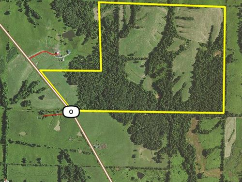 207 Acres Hwy O : Atlanta : Macon County : Missouri