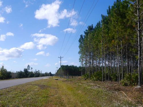 Meng Dairy Farms Parcel 2 : Starke : Bradford County : Florida