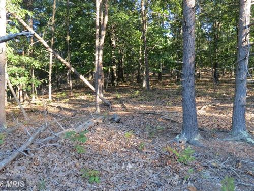 Wooded 6 Acre Lot : Burlington : Hampshire County : West Virginia