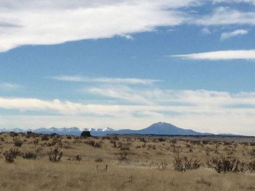 Looking For A 35+ Acre Parcel : Thatcher Pinon Canyon : Las Animas County : Colorado