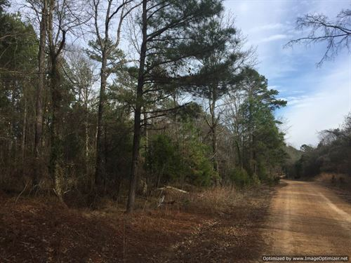 195 Ac Hunting/Timber Investment : Durant : Holmes County : Mississippi