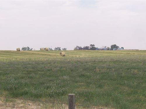 Pheasant Ridge Farm : Yoder : Goshen County : Wyoming