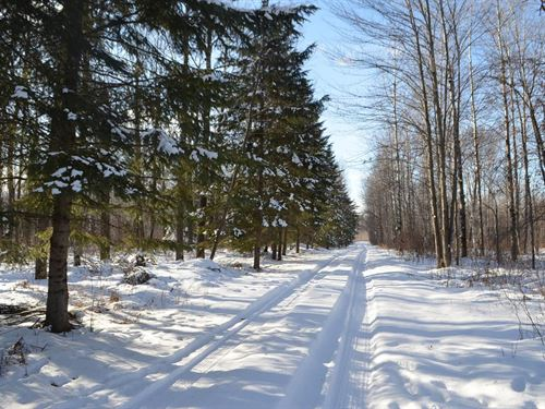Quality Hunting Parcel In Mosinee : Mosinee : Marathon County : Wisconsin