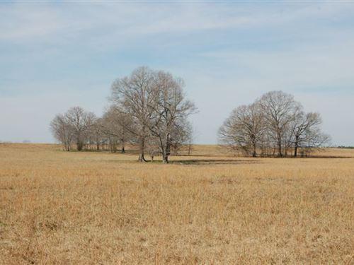 45-014 Middleton Road Tract : Sardis : Lowndes County : Alabama