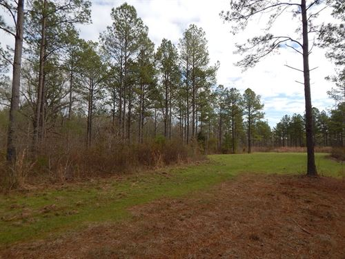 45-013 Pleasant Hill Tract : Sardis : Lowndes County : Alabama