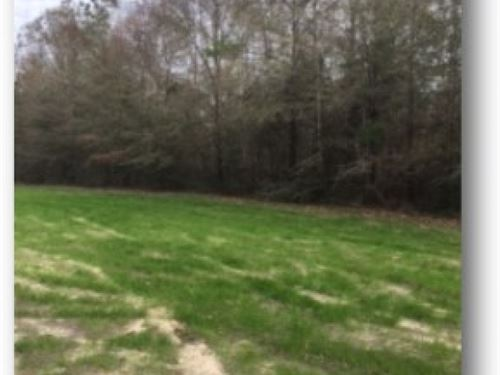 115.59 Acres In Pearl River County : Lumberton : Pearl River County : Mississippi