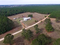 536 Acres Of Woodville Timber : Woodville : Tyler County : Texas