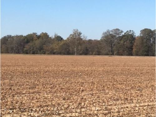 52 Acres In Quitman County : Crowder : Quitman County : Mississippi