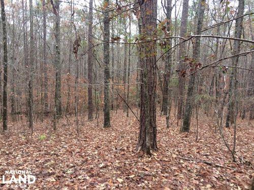 Tuscaloosa County Sealed Bid Sale : Northport : Tuscaloosa County : Alabama